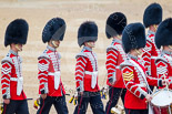 Trooping the Colour 2015. Image #333, 13 June 2015 11:08 Horse Guards Parade, London, UK
