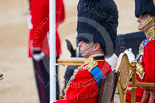 Trooping the Colour 2015. Image #351, 13 June 2015 11:13 Horse Guards Parade, London, UK
