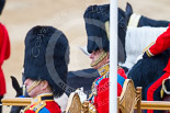 Trooping the Colour 2015. Image #352, 13 June 2015 11:13 Horse Guards Parade, London, UK