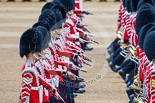 Trooping the Colour 2015. Image #355, 13 June 2015 11:13 Horse Guards Parade, London, UK