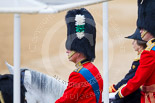 Trooping the Colour 2015. Image #358, 13 June 2015 11:14 Horse Guards Parade, London, UK