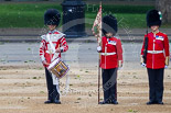 Trooping the Colour 2015. Image #363, 13 June 2015 11:15 Horse Guards Parade, London, UK