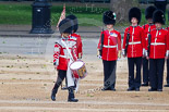 Trooping the Colour 2015. Image #364, 13 June 2015 11:15 Horse Guards Parade, London, UK