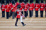 Trooping the Colour 2015. Image #365, 13 June 2015 11:16 Horse Guards Parade, London, UK