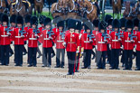 Trooping the Colour 2015. Image #366, 13 June 2015 11:16 Horse Guards Parade, London, UK