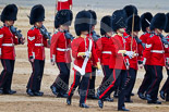 Trooping the Colour 2015. Image #370, 13 June 2015 11:17 Horse Guards Parade, London, UK