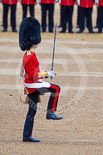 Trooping the Colour 2015. Image #372, 13 June 2015 11:17 Horse Guards Parade, London, UK
