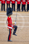 Trooping the Colour 2015. Image #373, 13 June 2015 11:17 Horse Guards Parade, London, UK