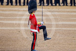 Trooping the Colour 2015. Image #374, 13 June 2015 11:17 Horse Guards Parade, London, UK