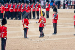 Trooping the Colour 2015. Image #385, 13 June 2015 11:20 Horse Guards Parade, London, UK