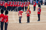 Trooping the Colour 2015. Image #386, 13 June 2015 11:20 Horse Guards Parade, London, UK