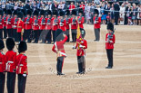 Trooping the Colour 2015. Image #387, 13 June 2015 11:20 Horse Guards Parade, London, UK