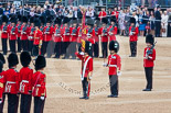 Trooping the Colour 2015. Image #390, 13 June 2015 11:20 Horse Guards Parade, London, UK