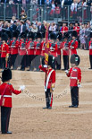Trooping the Colour 2015. Image #391, 13 June 2015 11:20 Horse Guards Parade, London, UK