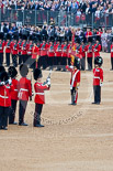 Trooping the Colour 2015. Image #392, 13 June 2015 11:20 Horse Guards Parade, London, UK