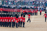 Trooping the Colour 2015. Image #395, 13 June 2015 11:21 Horse Guards Parade, London, UK