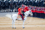 Trooping the Colour 2015. Image #420, 13 June 2015 11:30 Horse Guards Parade, London, UK