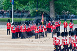 Trooping the Colour 2015. Image #425, 13 June 2015 11:31 Horse Guards Parade, London, UK