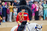 Trooping the Colour 2015. Image #433, 13 June 2015 11:33 Horse Guards Parade, London, UK