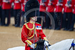 Trooping the Colour 2015. Image #435, 13 June 2015 11:33 Horse Guards Parade, London, UK