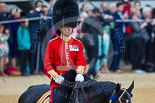 Trooping the Colour 2015. Image #436, 13 June 2015 11:33 Horse Guards Parade, London, UK
