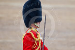 Trooping the Colour 2015. Image #438, 13 June 2015 11:33 Horse Guards Parade, London, UK
