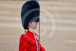 Trooping the Colour 2015. Image #439, 13 June 2015 11:33 Horse Guards Parade, London, UK