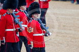 Trooping the Colour 2015. Image #441, 13 June 2015 11:33 Horse Guards Parade, London, UK