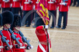 Trooping the Colour 2015. Image #444, 13 June 2015 11:33 Horse Guards Parade, London, UK