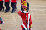 Trooping the Colour 2015. Image #445, 13 June 2015 11:33 Horse Guards Parade, London, UK