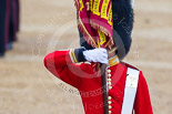 Trooping the Colour 2015. Image #446, 13 June 2015 11:33 Horse Guards Parade, London, UK