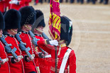 Trooping the Colour 2015. Image #447, 13 June 2015 11:34 Horse Guards Parade, London, UK