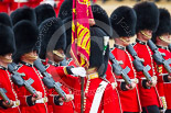 Trooping the Colour 2015. Image #448, 13 June 2015 11:34 Horse Guards Parade, London, UK