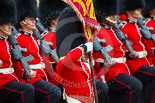 Trooping the Colour 2015. Image #451, 13 June 2015 11:34 Horse Guards Parade, London, UK
