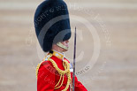 Trooping the Colour 2015. Image #452, 13 June 2015 11:34 Horse Guards Parade, London, UK