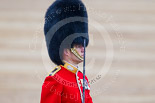 Trooping the Colour 2015. Image #453, 13 June 2015 11:34 Horse Guards Parade, London, UK