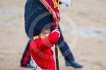 Trooping the Colour 2015. Image #455, 13 June 2015 11:35 Horse Guards Parade, London, UK