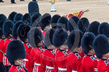 Trooping the Colour 2015. Image #458, 13 June 2015 11:35 Horse Guards Parade, London, UK