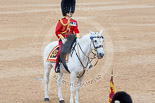 Trooping the Colour 2015. Image #475, 13 June 2015 11:38 Horse Guards Parade, London, UK