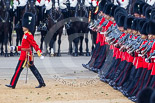 Trooping the Colour 2015. Image #490, 13 June 2015 11:41 Horse Guards Parade, London, UK