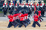 Trooping the Colour 2015. Image #493, 13 June 2015 11:41 Horse Guards Parade, London, UK