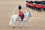 Trooping the Colour 2015. Image #503, 13 June 2015 11:44 Horse Guards Parade, London, UK