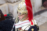Trooping the Colour 2015. Image #628, 13 June 2015 12:00 Horse Guards Parade, London, UK