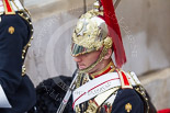 Trooping the Colour 2015. Image #629, 13 June 2015 12:00 Horse Guards Parade, London, UK