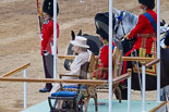 Trooping the Colour 2015. Image #634, 13 June 2015 12:02 Horse Guards Parade, London, UK