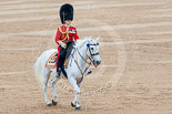 Trooping the Colour 2015. Image #639, 13 June 2015 12:06 Horse Guards Parade, London, UK