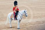 Trooping the Colour 2015. Image #640, 13 June 2015 12:06 Horse Guards Parade, London, UK