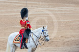 Trooping the Colour 2015. Image #641, 13 June 2015 12:06 Horse Guards Parade, London, UK