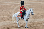 Trooping the Colour 2015. Image #643, 13 June 2015 12:06 Horse Guards Parade, London, UK