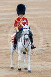 Trooping the Colour 2015. Image #644, 13 June 2015 12:06 Horse Guards Parade, London, UK